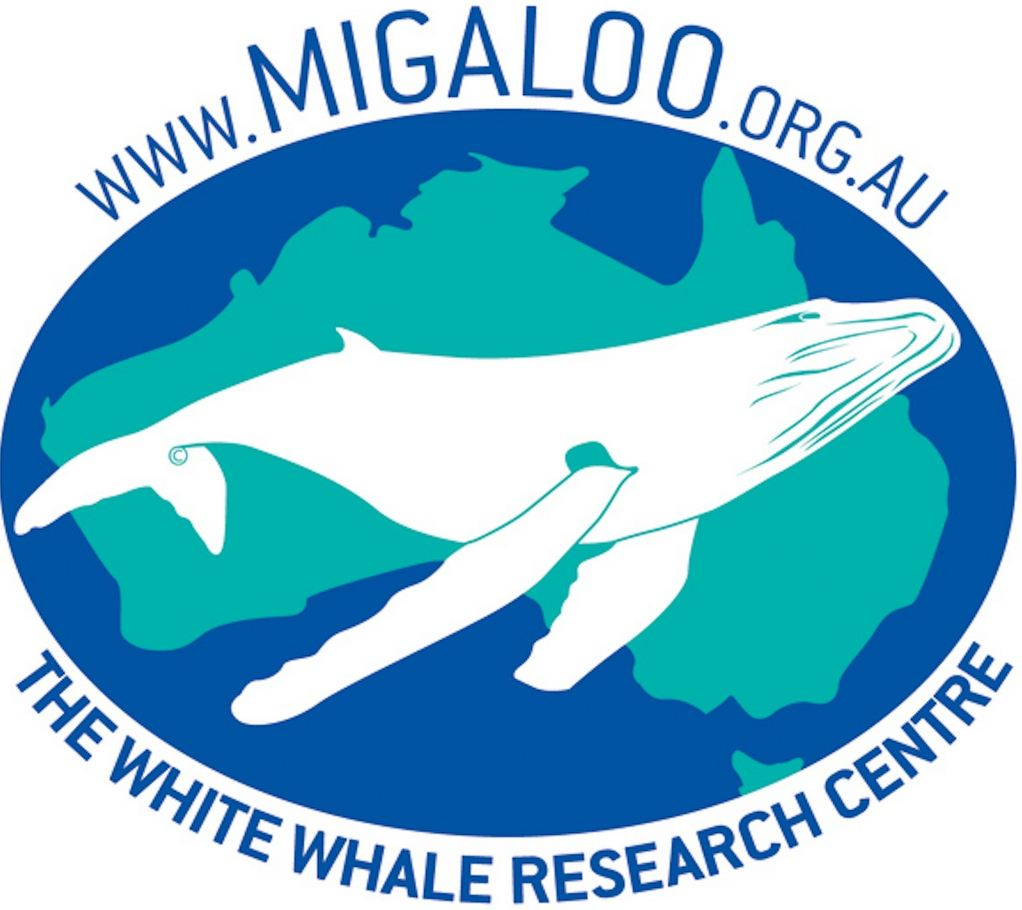 Migaloo: White Whale Research Centre